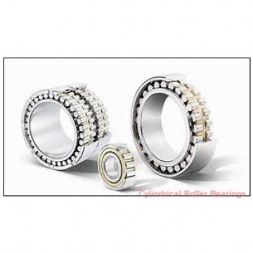2.165 Inch | 55 Millimeter x 3.496 Inch | 88.81 Millimeter x 0.984 Inch | 25 Millimeter  INA RSL182211  Cylindrical Roller Bearings