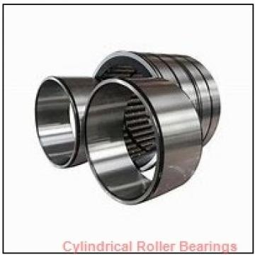 3.125 Inch | 79.375 Millimeter x 3.543 Inch | 90 Millimeter x 1.25 Inch | 31.75 Millimeter  ROLLWAY BEARING B-210-20-70 Cylindrical Roller Bearings