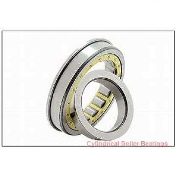 1.969 Inch | 50 Millimeter x 3.543 Inch | 90 Millimeter x 1.25 Inch | 31.75 Millimeter  ROLLWAY BEARING D-210-20  Cylindrical Roller Bearings